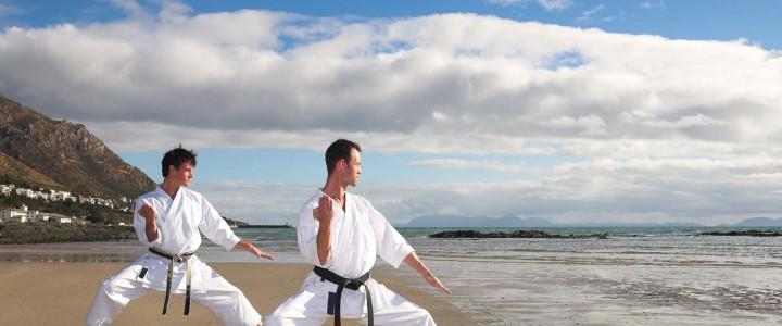 What will Martial Arts training do for me?